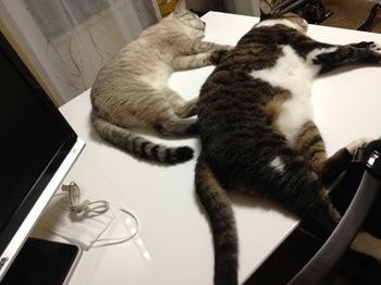 2012Aug22-Atomu&Maruko2.jpg