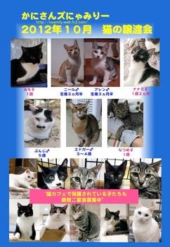 2012年10月にゃみりー参加猫.jpg