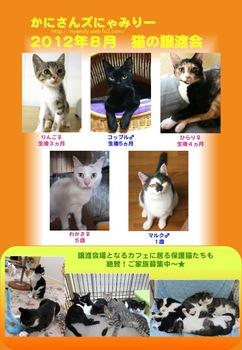 2012年8月かにさんズにゃみりー参加猫.jpg
