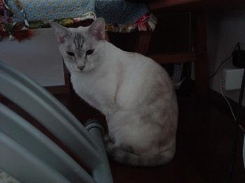 2012Oct24-Sunny2.jpg