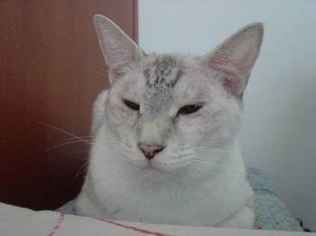 2012Sep24-Sunny5.jpg