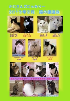 2013年2月にゃみりー参加猫ポスター.jpg