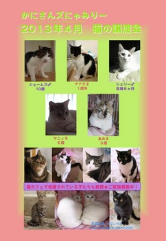 2013年4月にゃみりー参加猫.jpg