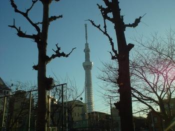 2013Feb24-スカイツリー.jpg