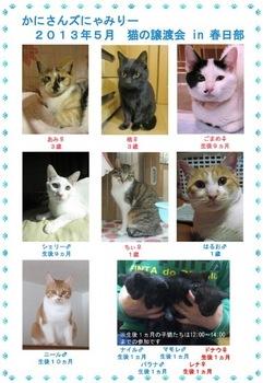 にゃみりー参加猫.jpg